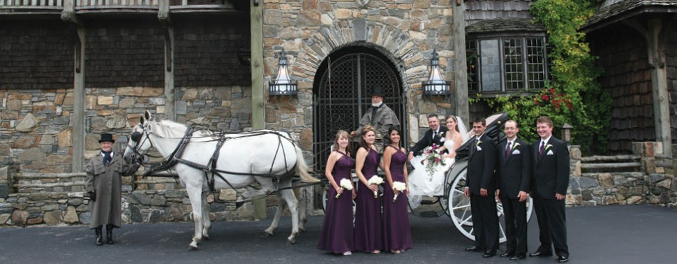 Exterior &#8211; Horse and Carriage and Wedding party